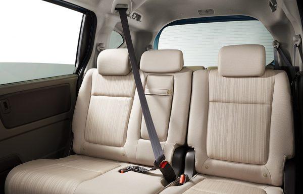 pic_seatbelt