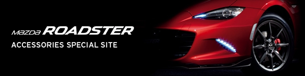 pickupitem_roadster.ts.1603250251135930
