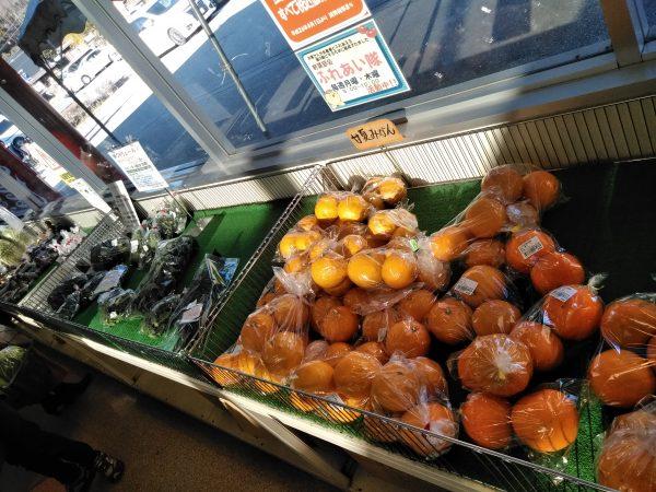 道の駅いながわの農産物や野菜