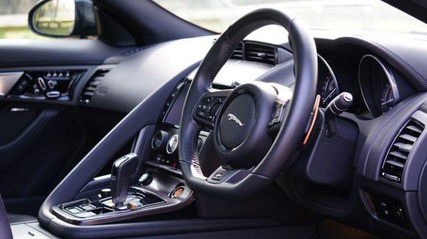 jaguar-1256550__480