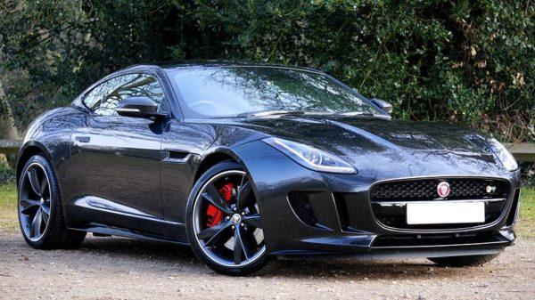 jaguar-1256570__480