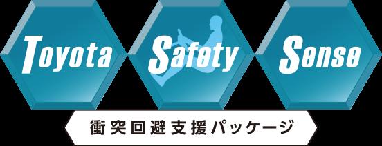 logo_tss
