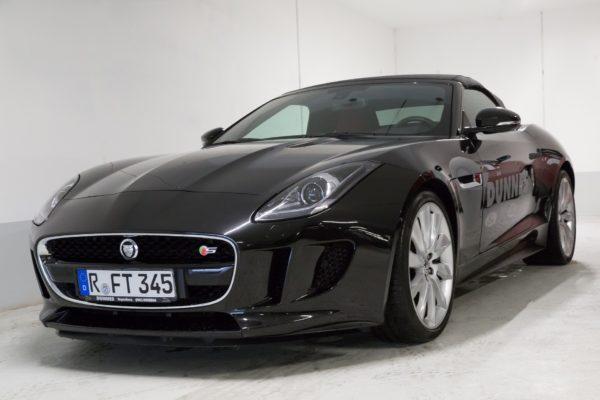jaguar-1076206_1920
